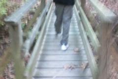 07_bridge
