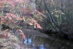 10_fall_scene